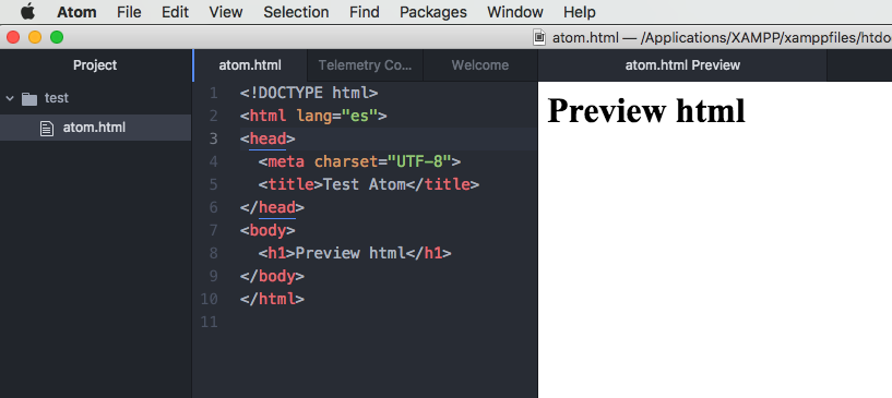 preview-view-atom-html